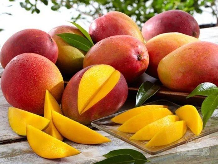 брага из манго