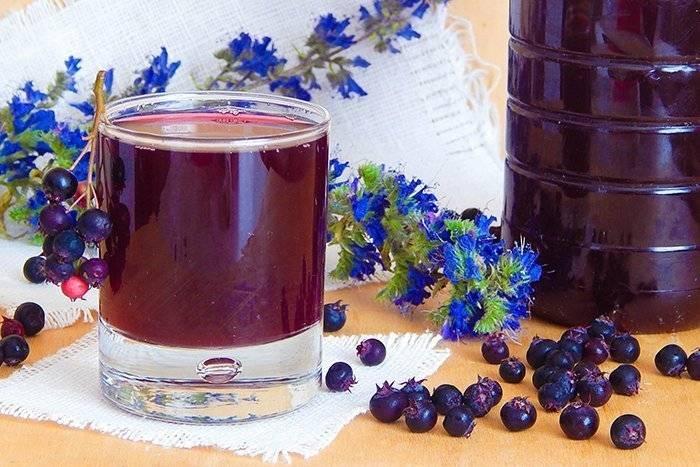 вино из ирги без отжима сока