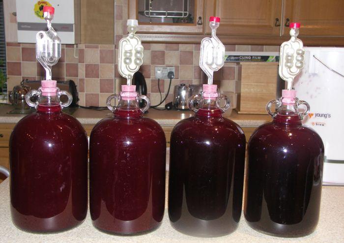 первоначальное сбраживание винограда