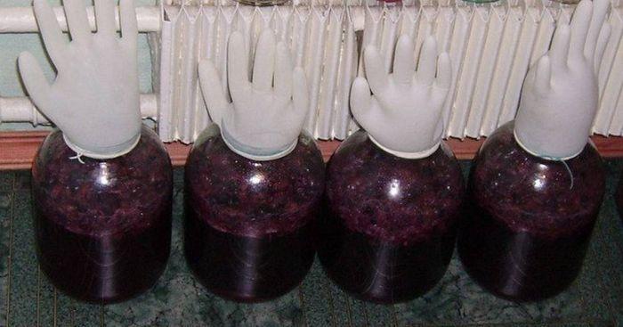 красное вино сорта винограда