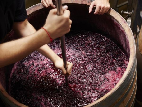 получение виноградного сока