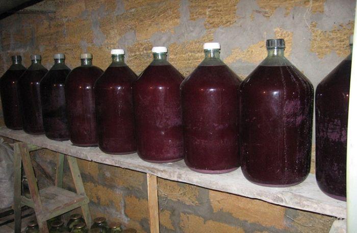 вызревание вина из винограда